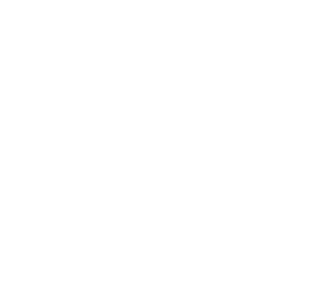 Icon Politische Kommunikation