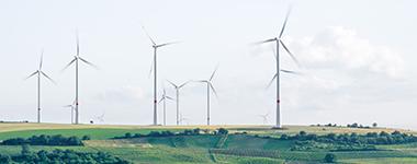 Nachhaltigkeitsreporting ist Pflicht
